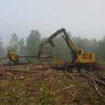 Tiger Cat 240B Log Loader1